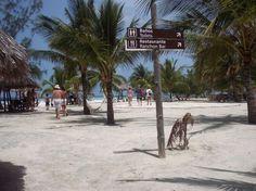 Cuba, varadero Varadero, Cuba, Travel Destinations, Street View, Spaces, Beach, Water, Outdoor, Restaurants