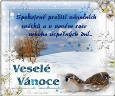 Vánoční přání - Obrázková přání Merry Christmas, Merry Little Christmas, Happy Merry Christmas, Wish You Merry Christmas
