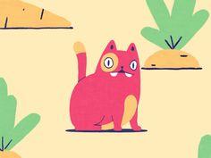 Cat prores dribbble