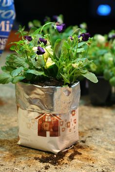 Create through up-cycling make a kitchen planter from a recycled Starbucks coffee bag! Can use for flowers or to grow spices right where you need them! Drinking Black Coffee, Reduce Reuse Recycle, Quiet Moments, Starbucks Coffee, Coffee Bags, Best Coffee, Easy Diy, Simple Diy, Container Gardening