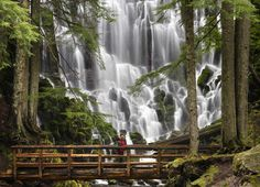 Ramona Falls, Oregon: Follow the Ramona Falls trail in Oregon's Mount Hood Forest to discover this g... - Getty Images/Purestock, Purestock
