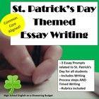 persuasive essay peer edit
