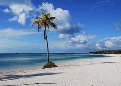 Beach on Coco Cay.