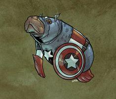 DC And Marvel Superheroes As Manatees Captain America Manatee Ms Marvel, Marvel Comics, Marvel Avengers, Aquaman, Comic Book Superheroes, Comic Books, Geek House, Ironman, Geek Art