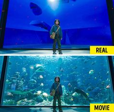 Dawn Of The Planet, Planet Of The Apes, Real Movies, Famous Movies, Chroma Key, Movie Special Effects, The Shape Of Water, Crimes Of Grindelwald, Home For Peculiar Children