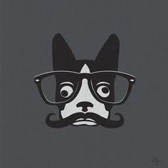 this is the best thing ever!!! Mustache and a boston!!!