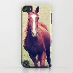 iPod touch horse case