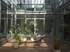Atrium with greens in Closed headquarters in Hamburg, Germany. Interior design by PHILIPP AMINZER (2015). Photo: Philipp Mainzer