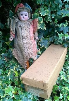 Rare Antique French Bisque Head  Marotte Doll With Original Box  c1886 14""