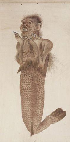 川原慶賀「人魚図」