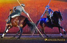APASSIONATA Tour 2012/2013 - Viel Geschicklichkeit beweist die Equipe Sebastian Fernandez mit der Garrocha.