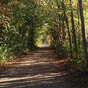 Danvers Rail Trail, Danvers MA 01923