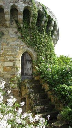 turret vines steps door to mystery