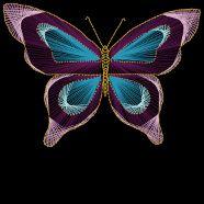 Butterfly String Art Pattern