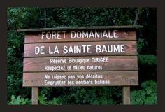 Forest Sign of the Sainte-Baume Forest  © 2007 Dahna Barnett
