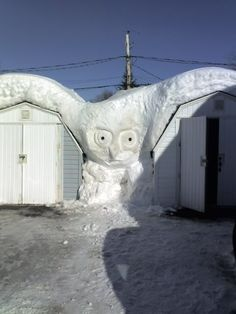 @Sylvia - Here is the next sculpture you should do. Snow Owl sculpture. Photo by Ted Bartlet, New Brunswick.