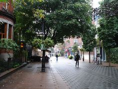 A Dutch Woonerf, a street shared by cars, bikes, and pedestrians. aka complete street or living street.