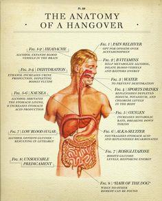 Anatomía de la resaca.