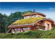 Barrel-Vaulted Private Residence, Kempten, Germany; Photo Courtesy Optigreen
