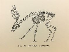 I'll be reborn someday.