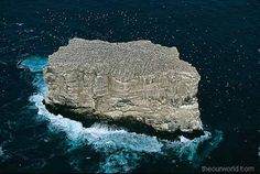 Two billion year old rocks make up the Buccaneer Archipelago, about 800 islands off the coast of Western Australia. These islands between King Sound and Collier Bay near Yampi Sound are in almost pristine condition due to the difficulty of gaining access. The Buccaneer Archipelago is compromised of ancient pre-cambrian sandstones with many high cliffs. Some islands have patches of rain-forests. Large, fine pearls are harvested by local pearlfarmers in the surrounding Timor Sea.