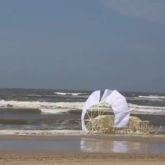 Theo Jansen's New Strandbeest Roams the Beach Like an Undulating Caterpillar kunst, It's a Man's World