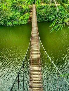 Puente colgante en el Lago Garsas en Adjuntas Puerto Rico