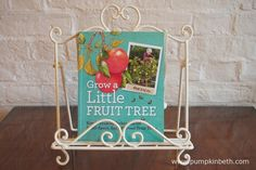Read my review of Grow a Little Fruit Tree by Ann Ralph at www.pumpkinbeth.com