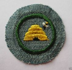 Girl Scouts beekeeping badge