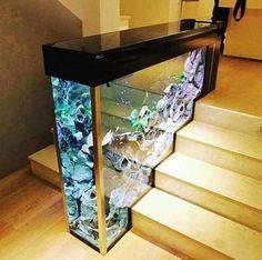 Un aquarium d'escalier.20 Idées étonnantes pour ceux qui ont envie de rénover leur maison