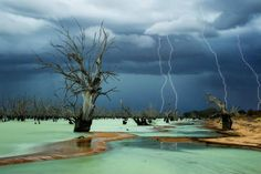 An eerie outback photo has won the People's Choice Award in the ANZANG Nature Photography Competition at the South Australian Museum.    Julie Fletcher, from Quorn in South Australia, captured her stormy image Graveyard at Menindee Lakes in New South Wales.