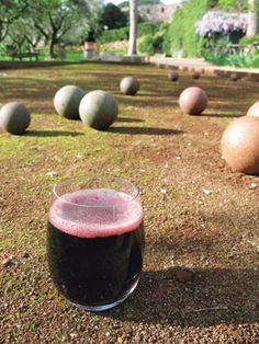 Sonoma's new best kept secret, Peter Cellars. Great spaces to lounge, play bocce, and sip the afternoon away as part of the Get Your Grape On Wine Tasting Tour on Saturday.