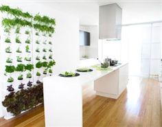 vertical garden: how cute is that?! your own herb garden inside the kitchen!
