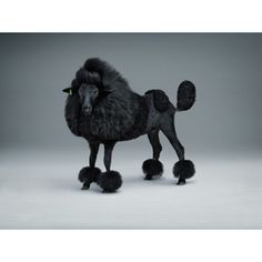 Het zwarte schaap / Black sheep  Lernert & Sander - Amsterdam    .........       It's not what it seems!