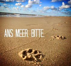 ...walk to the sea