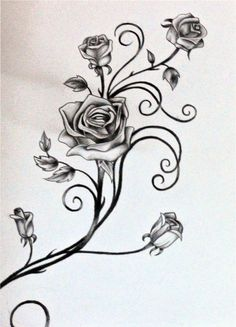tattoos rose vines drawings of pencil drawings angels tattoo tattoo . Rosen Tattoo Schwarz, Rosen Tattoo Frau, Rosen Tattoos, Female Tattoos, Foot Tattoos, Body Art Tattoos, Sleeve Tattoos, Tatoos, Skull Tattoos