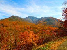 Smoky Mountain National Park, Gatlinburg, Tennessee I'm ACHING to go back!