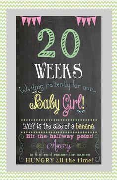 Bundle for every week of pregnancy Pregnancy by SweetBeeCreates