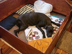 Whelping Box Construction Plans Welping Box, Dog Whelping Box, Dog Birth, Behavior, French Bulldog, Ranch, Construction, Plastic, Puppies