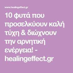 10 φυτά που προσελκύουν καλή τύχη & διώχνουν την αρνητική ενέργεια! - healingeffect.gr Health Fitness, Food And Drink, Advice, Drinks, Tips, Cupcake, Articles, Gardening, House