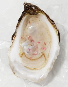 Oysters with Summer Vinaigrette - Gather Journal