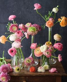 Latest Free Ranunculus colors Suggestions Consideration All of Cut-Flower Admirers! A high level cut-flower lover—and who is not? May Flowers, Summer Flowers, Fresh Flowers, Beautiful Flowers, Deco Floral, Arte Floral, Illustration Blume, Flower Vases, Ranunculus Flowers