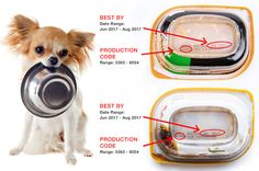 Purina announces a dog food recall due to low levels of necessary nutrients for pets