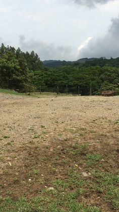 This is where the goats were.