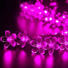 Outdoor Solar  String Lights Pink Blossom Decorative Gardens, Lawn, Patio, Christmas Trees, Weddings, Parties, Indoor and Outdoor Use.