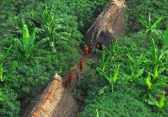 Vale do Javari Reservation, Brazil Specially isolated to protect indigenous tribes
