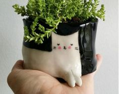 Etsy の Cat Pot Plant small eyes open by GailCCceramics