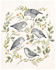 Image result for birds botanical print