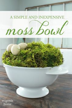 A simple and inexpensive moss bowl for spring! Takes less than an hour to make!