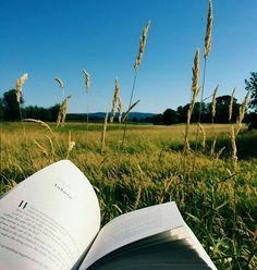 alternative, books, and sky image